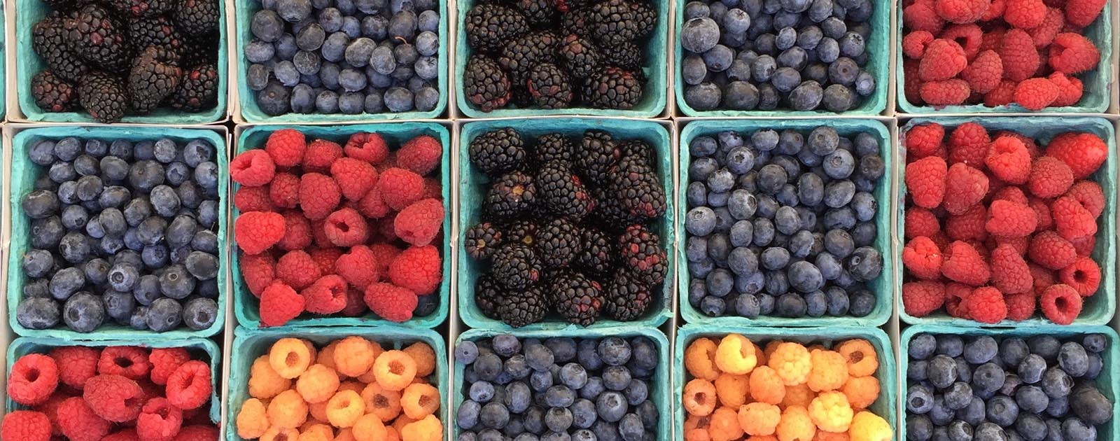 Bartlett Station Farmer's Market Opens, Movies in the Park Planned for August